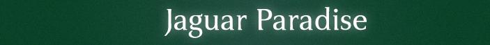 jaguarspecialist-abcb54f428a3c1201a4a2e136f26b7c0.png